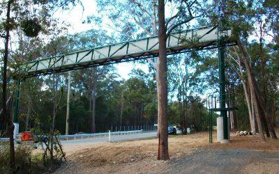 Koala Crossing